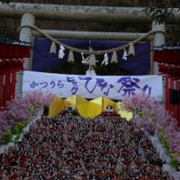 かつうらビックひな祭り 絶景の遠見岬神社の石段飾り