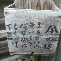 龍安寺の傘置き棚