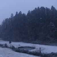 2度目の雪は、2cm?
