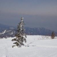 根子岳(快晴・快適・春スキー)