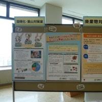 食育活動パネル展示中!~~~石川県庁舎 19階