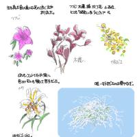 昭和な庭木でありました。。
