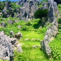 大石林山 聖地のパワー