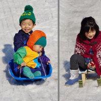 ゲレンデを滑る子供 (志摩市阿児町鵜方)