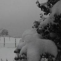 平成29年1月22日・今朝の東祖谷-4.0℃  積雪50~60cm