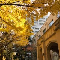 紅葉が美しいキャンパスにうっとり**