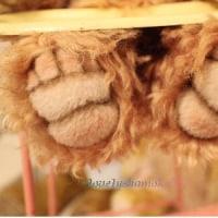 ぷくちゃんの冬仕度(●^o^●)クルクルモヘアの冬毛です(笑)…キャワワ♪