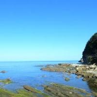 ドべた凪の竹野です☆透明度良しッ!キレイな海でした~
