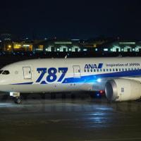A321二回目の飛来!のはずが