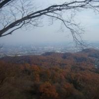 今日は、いつもの山に行く。