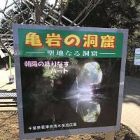 亀岩の洞窟・濃溝の滝