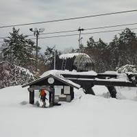 大雪の後 170215