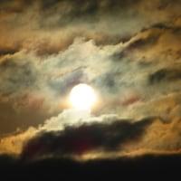 今日は、月と太陽が撮れただけでも・・・・