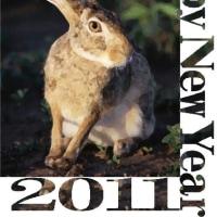 2011 謹賀新年