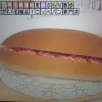 魔法のコッペパンでつなぁ〜