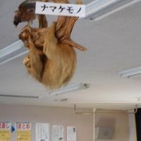 12/2 こんな理科室は・・・・