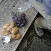 阿蘇神社の門前町で食べ歩き