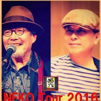 『NEKO New Album 猫6 発売記念ツアー』
