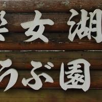 2017・神楽女湖の5分咲菖蒲  その2