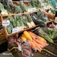 【Cooking/野菜研究】各地の伝統野菜を探しに