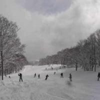 赤倉へスキーに