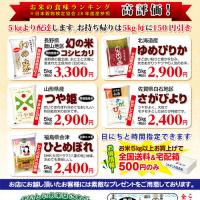 ポストイン用のチラシ   28日朝日新聞にて折込