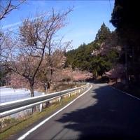 石廊崎までプチツーリング!!??