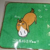 東京競馬場でToday'sチャンス賞当たり~♪