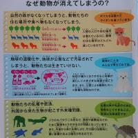 FUJIFILM SQUARE 企画写真展「世界動物遺産 最後の一頭に、してなるものか。」(2016.9.26)