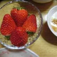 昨日の朝食に、大きなイチゴを食べました。(笑)