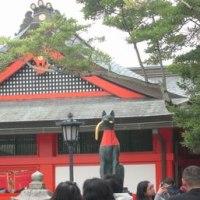 錦繍の京都を訪ねて。