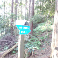 天草の山(蕗つわ岳(320m)白岳(372m)登山