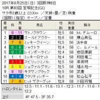 ■最終報告/2017Springシリーズ
