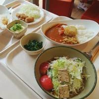 「京大学食ベジタリアンメニュ-探訪@京大生協食堂」の報告