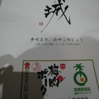 ふるさと納税♪ 宮崎県都城市の『梅肉ポークしゃぶしゃぶセット』