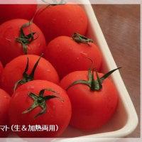 生トマトのパスタソース比較