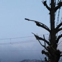 寒い日晴れ曇りの神戸です。