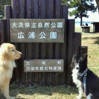 涸沼の広浦公園*