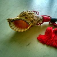 簡単法螺貝製作法