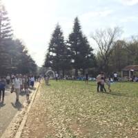 代々木公園は人出が多い…
