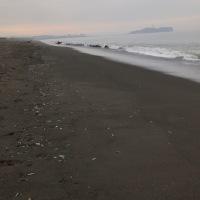 海風も微妙〜〜