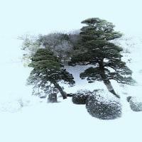 雪の日のアトリ…