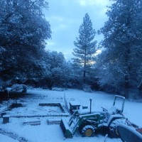 A White New Year 2017 in Laytonville, California