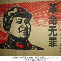 TPPに抗議するとテロ!政府の政策に反対する者は内乱等(内乱等幇助罪)に当たるのだ!【共謀罪である】