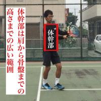 ボレー 「腕」で打つボレーと「体幹」で打つボレーの違い  〜才能がない人でも上達できるテニスブログ〜
