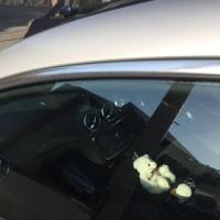 車用雨ジミ除去剤 Kongoo「モールスーパー(マスキングテープ、専用パット&替えパット付)」(amazon)