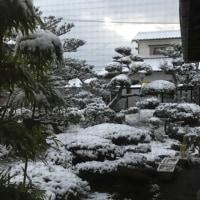 雪景色な最後の庭