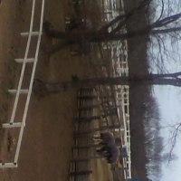 茨城で乗馬 ポニー