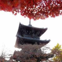 京都の紅葉「真如堂」