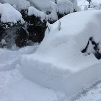 地元、雪スゴいです!!(and 釜石C58)